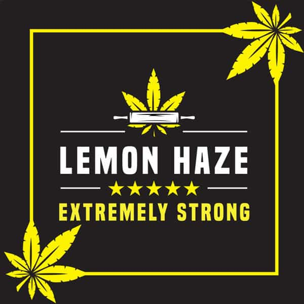 Lemon Haze Brownie